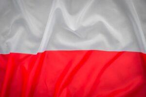 Профессиональные переводы польского